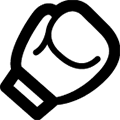 Combat Sports Logo