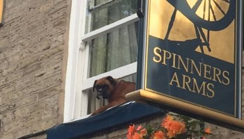 Spinners Arms