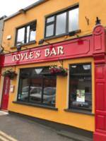 Doyles bar ferns